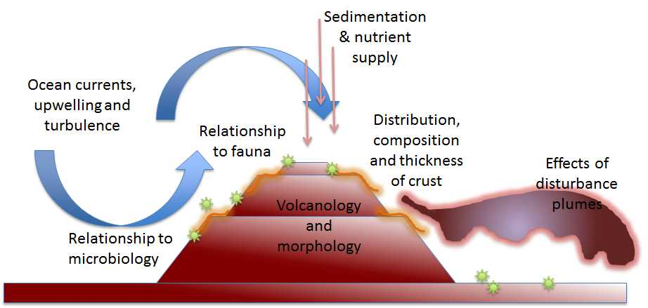 Schematic of crust formation